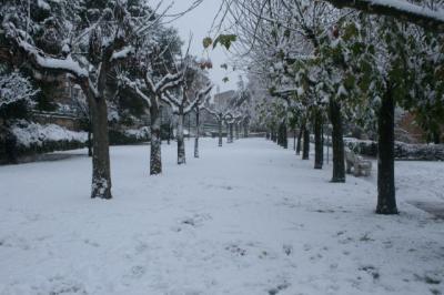 20091217140039-nieve-diciembre-09-019-640x640x80.jpg