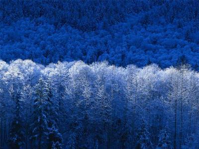 20100219232954-winter.jpg