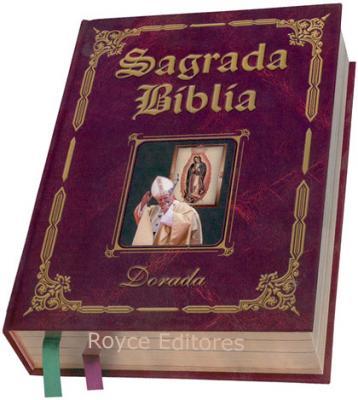 20101212212529-1218649434-la-20biblia.jpg