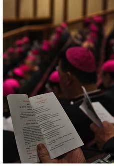 20110304205931-143-sinodo1-i.jpg